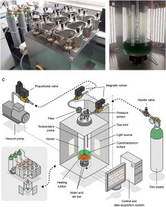 Fotobioreaktor-niski tlak