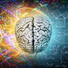 evolucija-ljudskog-mozga