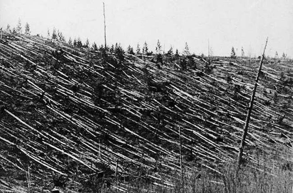 Tunguska 1908. Izvor: Cnn.com