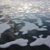 Otapanje Zemljinog leda. Izvor: NASA/Kathryn Hansen