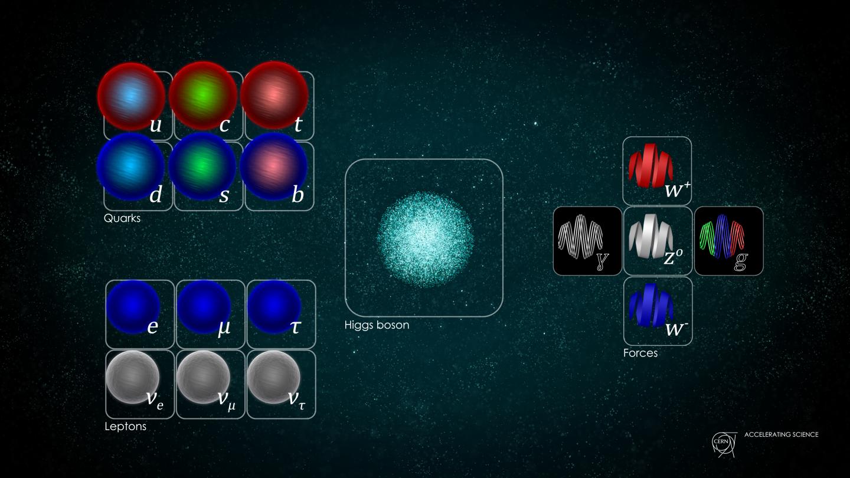 Standardni model čestica. Izvor: Daniel Dominguez/CERN.