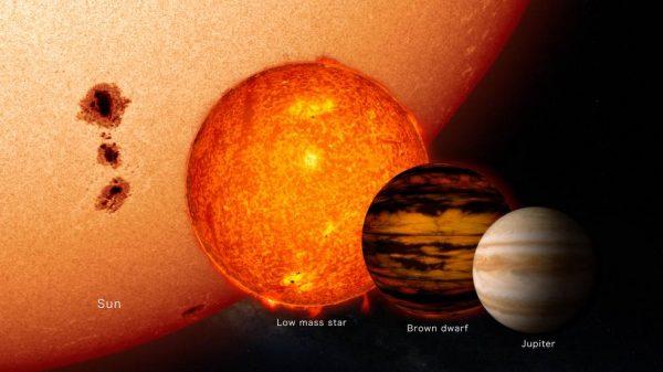 Usporedba Sunca, zvijezde male mase, smeđeg patuljka i plinovitog diva (Jupitera). Izvor: NASA's Goddard Space Flight Center
